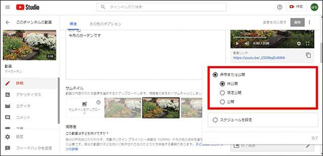 画像: 非公開の場合でも、右上の「オプション」→「限定公開」で相手のメールアドレスを指定して視聴してもらうことが可能。