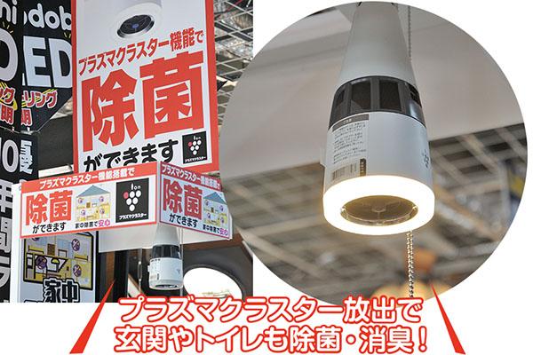 画像: 5年以上前からあるプラズマクラスターライトも、コロナで人気が急浮上。「照明でも除菌ができる」と話題に。