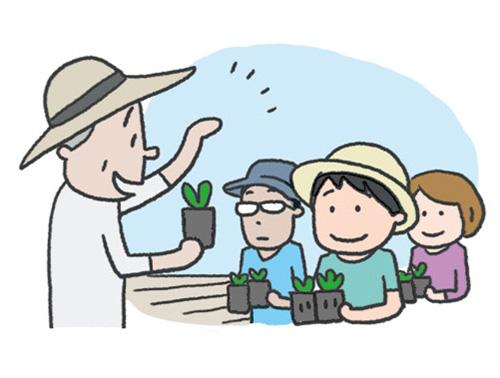 画像1: ③体験農園タイプ