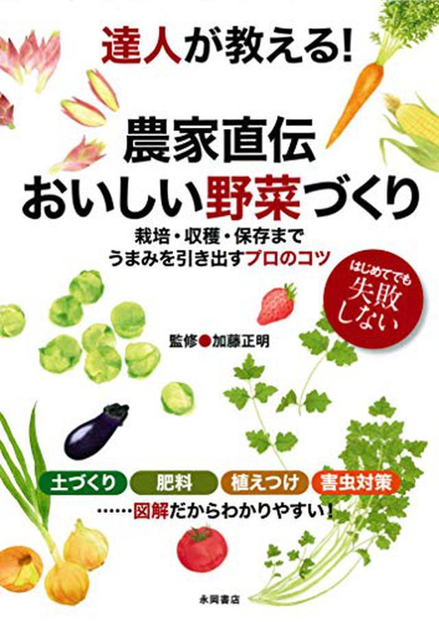 画像: 【野菜栽培】野菜の種類と特徴 初心者でも簡単な野菜は?まずは栽培難易度の目安を知ろう