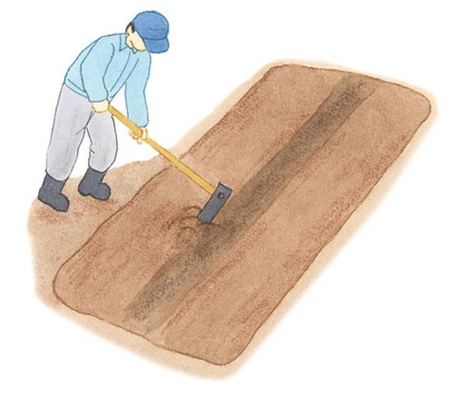 画像: 元肥を施す