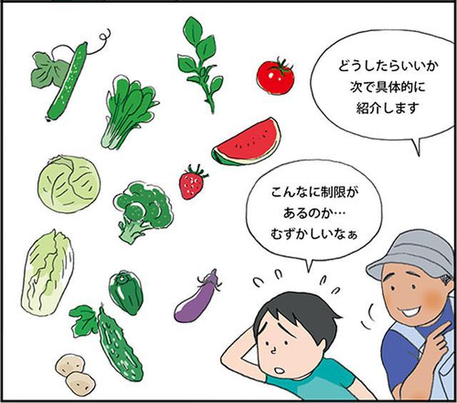 画像: 4〜5年あける野菜