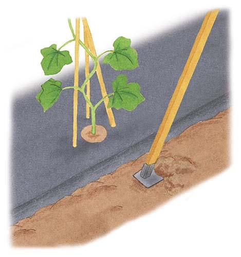 画像: 耕しながら混ぜる