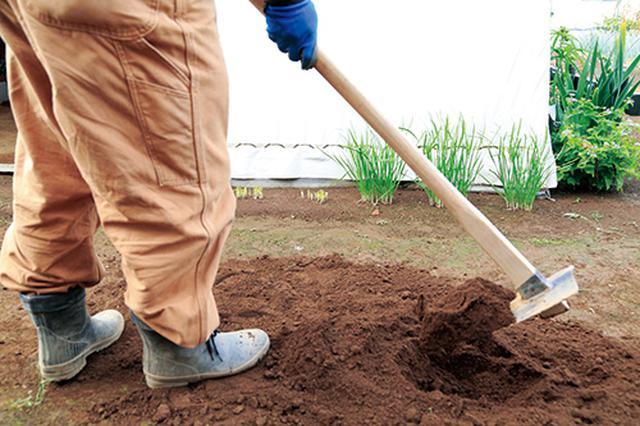 画像1: やわらかい土を耕す