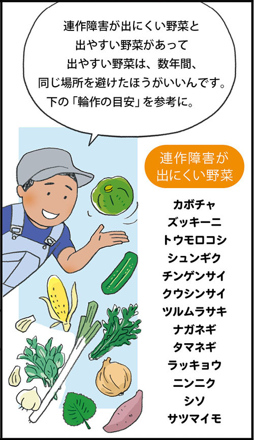 画像5: ▼果菜