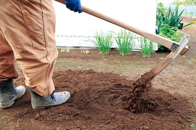 画像2: やわらかい土を耕す