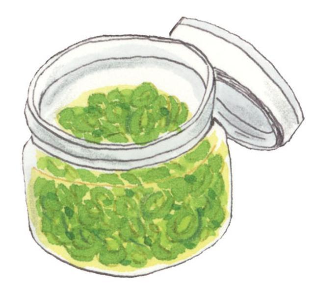 画像: シシトウは焼いたり炒めたり、 トウガラシはオイル漬けがおすすめ