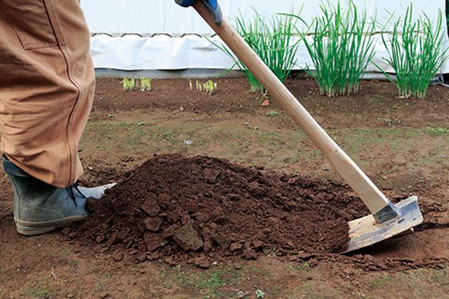 画像1: かたい土を起こす
