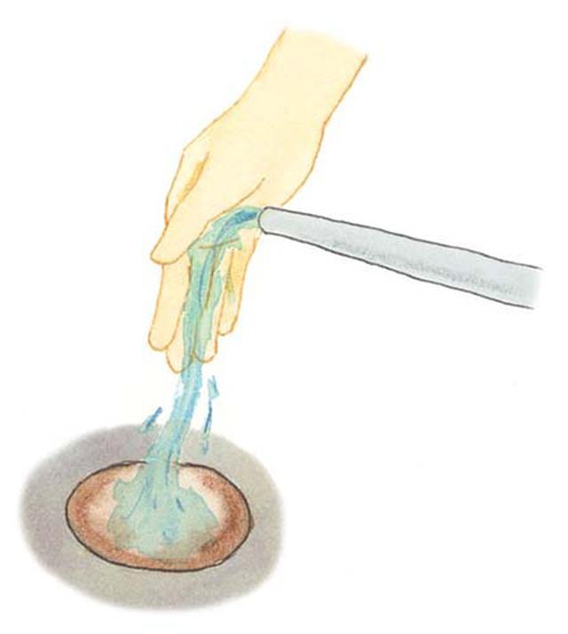 画像: 植え穴に水を入れる