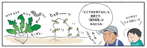 画像1: ▼果菜