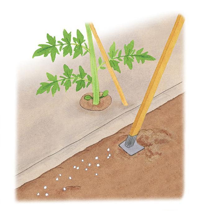 画像: クワで混ぜながら耕す
