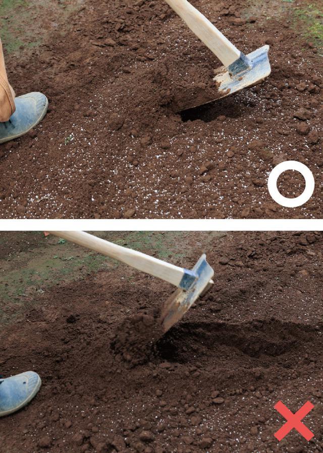画像: 肥料などを混ぜる