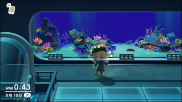 画像: コレクター心をくすぐるクオリティの高い水族館