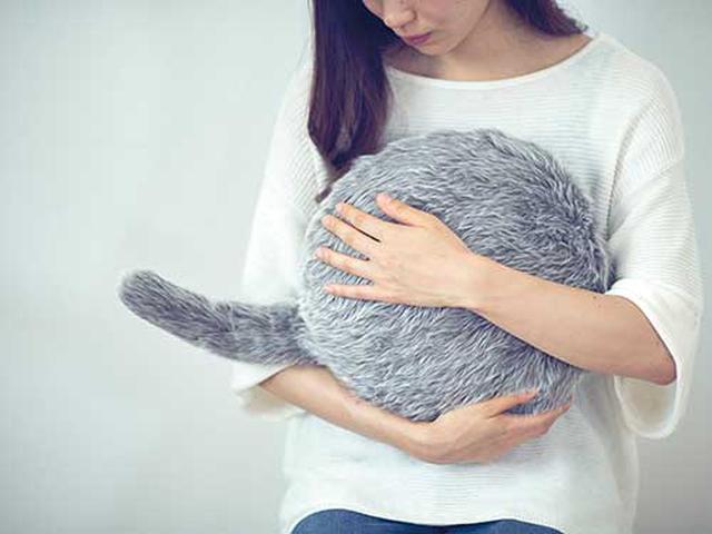 画像: 抱き上げたときにちょうどいい重さとサイズ感を追求。しっぽの動きにもこだわって、プログラムの開発を行った。