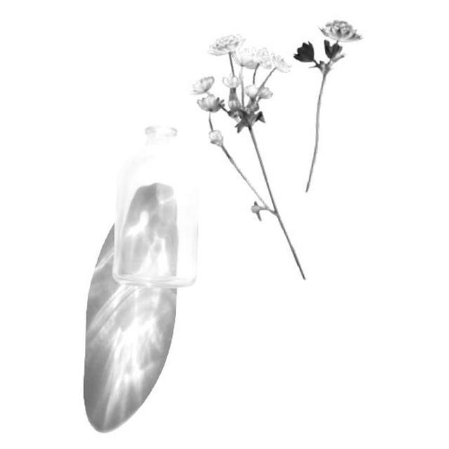 画像: 花を飾るにはいくつかのステップがあり、幼児は手先の器用さや、物を運ぶ、水を注ぐといったものを、家を美しく飾りながら学んでいくことができる。最初に、幼児は水道から小さめの水差しに水を入れ、それをこぼれても受けられるようトレイに載せる。小さいじょうろを使って、花びんに水を注ぐ。花びんに花を挿し、それを花びん用の敷物の上に置く(これも集中力を高めるために良い)。水が飛び散ったところは、スポンジで拭こう。1歳半頃から
