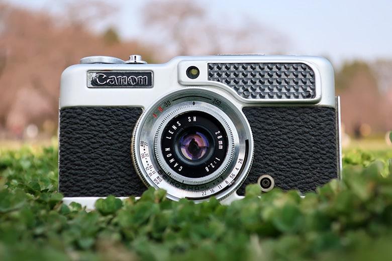 画像: 自分の身体で作った日陰を活用しつつ、撮影に使用するカメラをさらに下げて、水平に近いアングルで狙ってみた。すると、背景に遠方の風景(木立や青空)を入れることができた。こういったカメラ位置とアングルの工夫によって、被写体の見え方や周囲の様子も大きく変わってくる。 キヤノン PowerShot G9X Mark II(84mm相当で撮影) 絞り優先オート F5.6 1/800秒 WB:オート ISO125