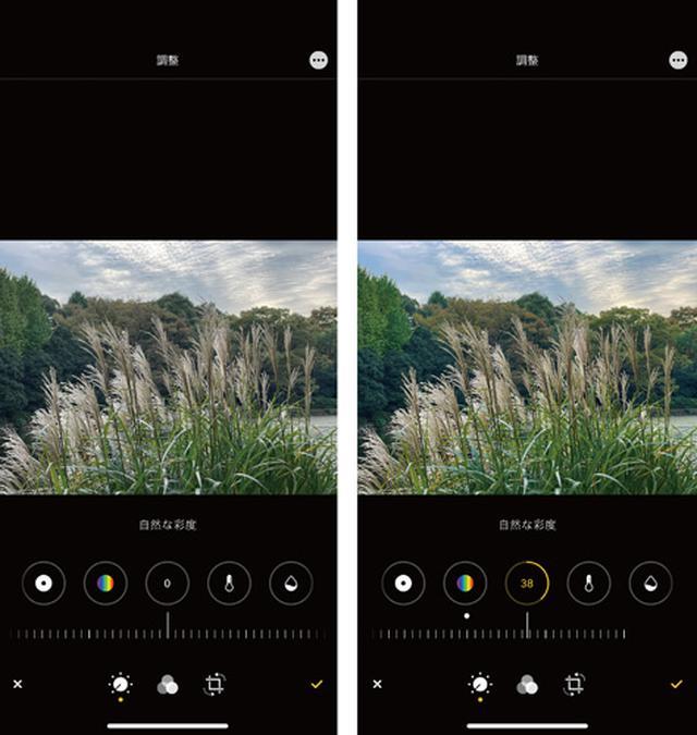 画像: 木の葉の緑色や空の色が鮮やかになった(右)