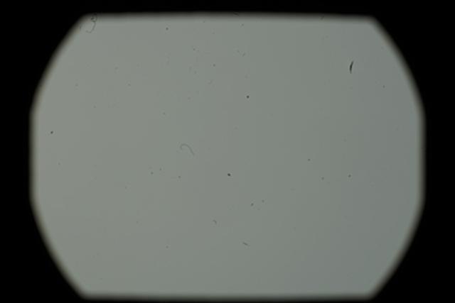 画像: 筆者のカメラをセンサーの汚れをチェックしてもらった結果。かなり汚れているのがわかります。※当日装着していたレンズがAPS-C用だったため、周辺が一部暗くなっています。