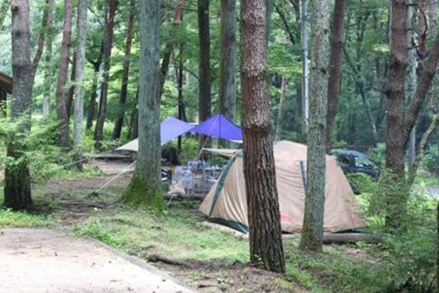画像: www.nosokoyama.net