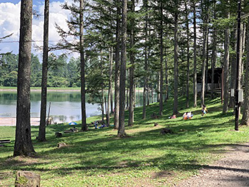 画像: www.public-camp.com