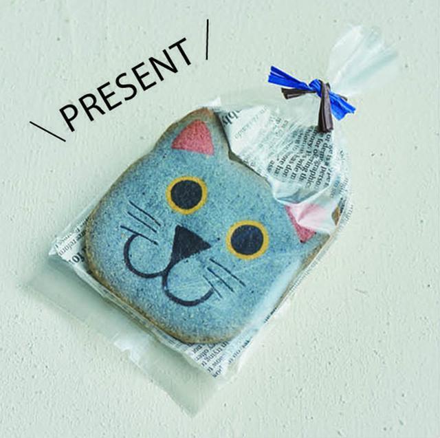 画像1: 【アイスボックスクッキーとは】くまやネコ…かわいい動物キャラクターが人気 普通のクッキーとの違いも解説