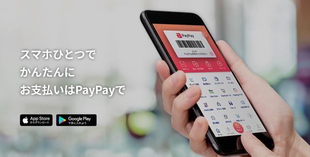 画像: paypay.ne.jp