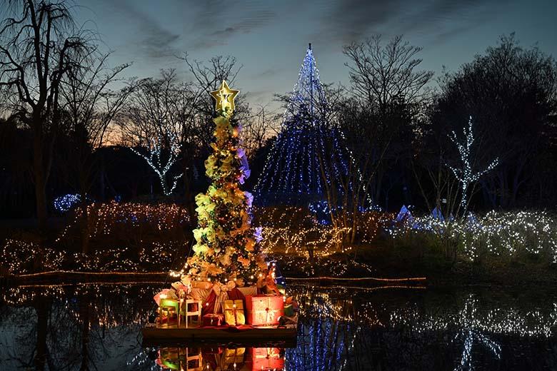 """画像: 池の中にあるメインのイルミネーションは、赤みの強い光源に照らされている。その色味が感じられる見た目に近い色調。だが、少し赤みが強い色調のせいか、背後の空の""""上部の青い部分""""は濁った印象がある。"""