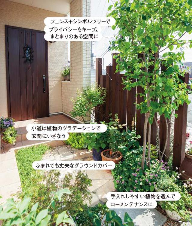 画像2: 玄関前のスペースの実例 土の少ない玄関前も緑あふれる小さな庭に