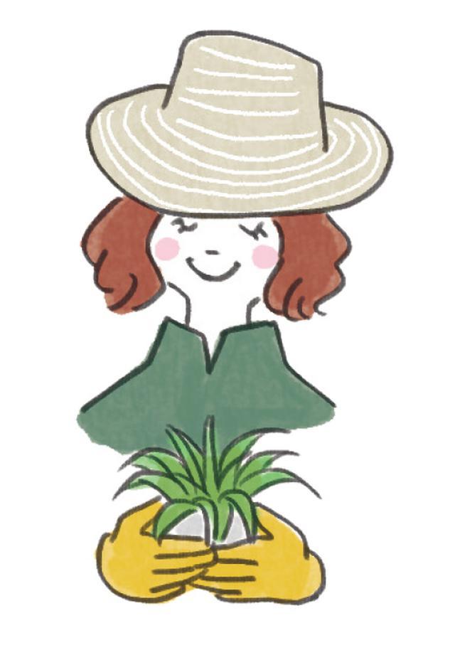 画像1: 【実例】小さな庭の作り方 狭い庭でもおしゃれにガーデニングを楽しむ!初心者向けに解説