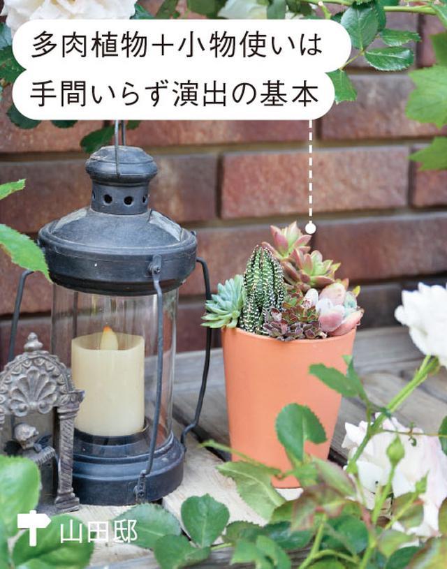 画像1: ミニチュアガーデンの実例 縦空間を活用して狭い庭を快適に演出