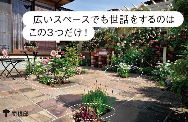 画像3: ローメンテナンスの庭の実例 植栽スペースを限定した手間をかけない庭づくり