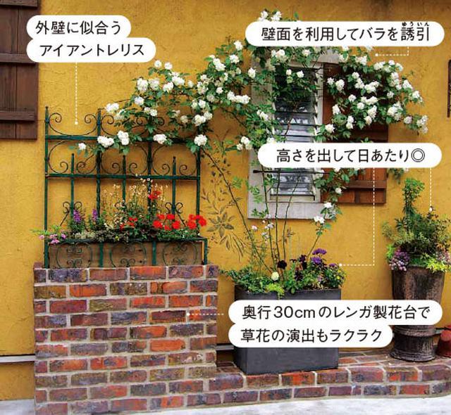 画像1: 玄関前のスペースの実例 土の少ない玄関前も緑あふれる小さな庭に