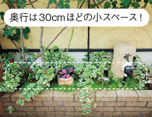 画像4: ミニチュアガーデンの実例 縦空間を活用して狭い庭を快適に演出