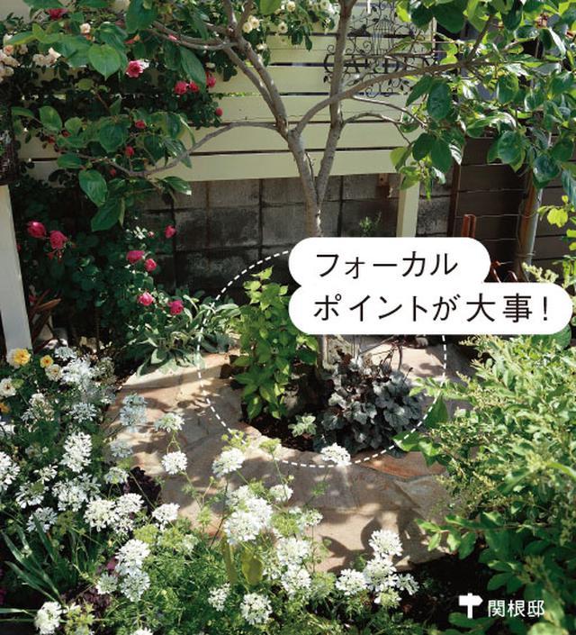 画像2: ローメンテナンスの庭の実例 植栽スペースを限定した手間をかけない庭づくり