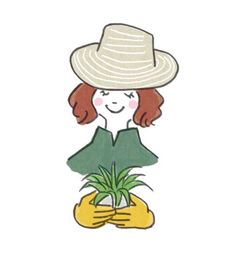 画像4: 【日陰の花壇】日照条件に合った植物選びとレイアウトを紹介 日陰・半日陰でも育つおすすめの草花