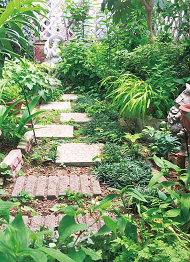 画像1: ▼ 花壇と小道を同色でまとめて狭さを感じない空間に