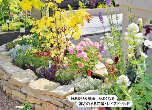 画像1: 草花の手入れがしやすく小さな庭にまとまりが生まれる