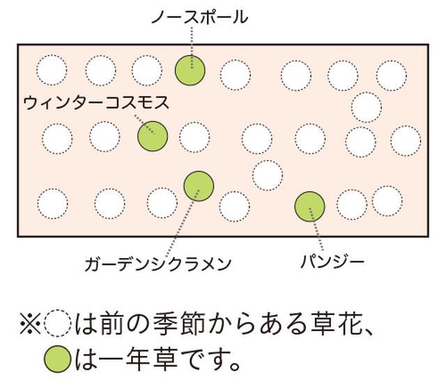 画像6: 植栽図