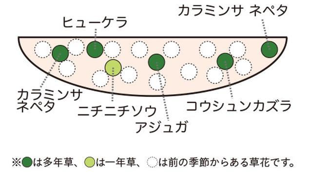 画像2: 植栽図