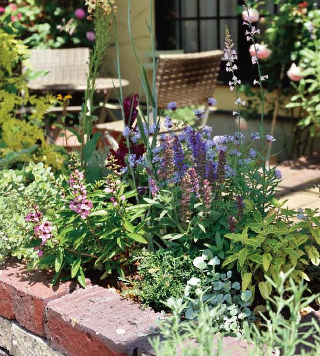 画像5: 春から初夏にかけては色どり豊かな花から爽やかな緑への変化を愛でて