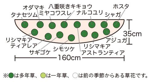 画像1: 植栽図