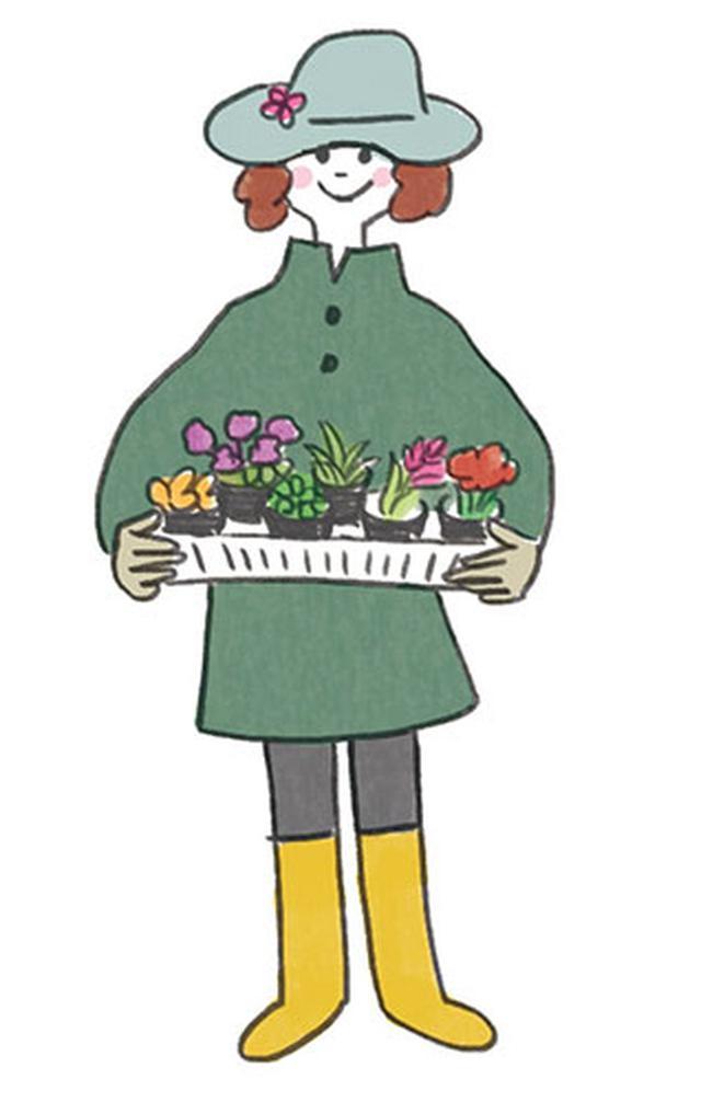 画像: 多年草と一年草のバランスがカギ 最小限の手間で花いっぱいの花壇が