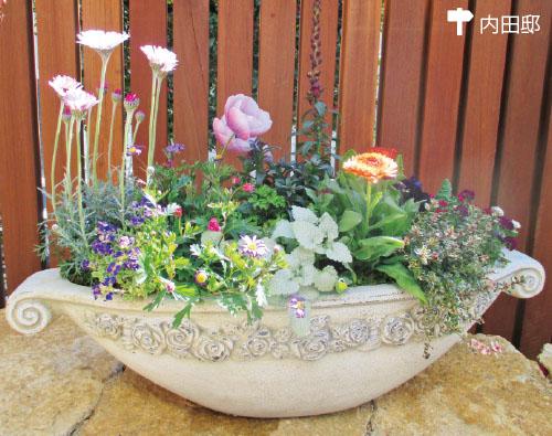画像2: 鉢のコーディネートも重要