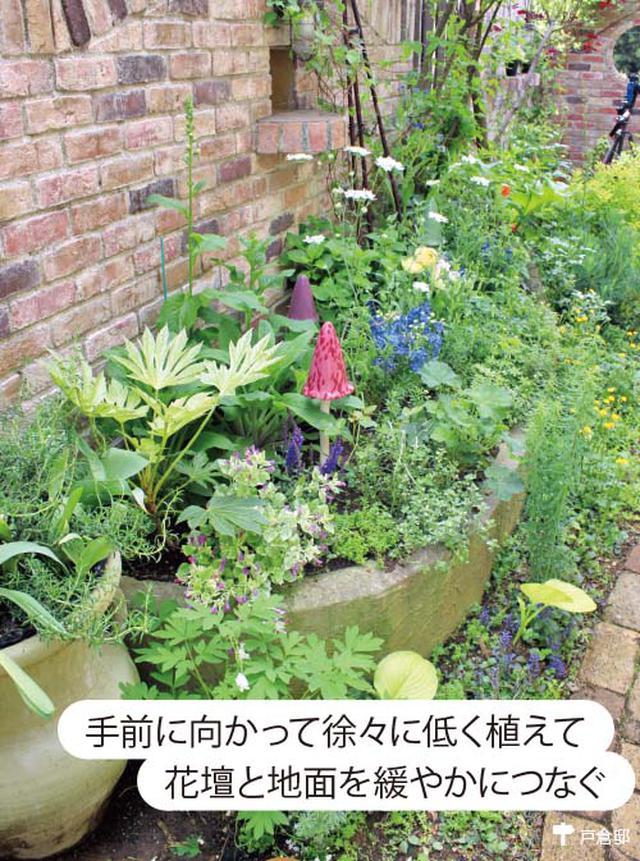 画像3: 草花の手入れがしやすく小さな庭にまとまりが生まれる