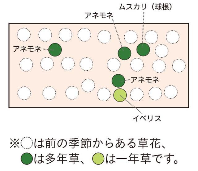 画像9: 植栽図