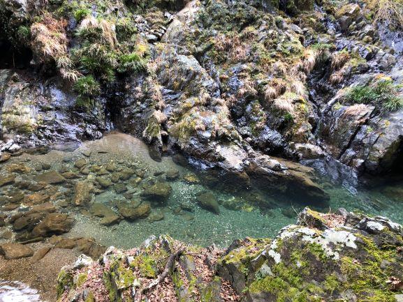 画像: 川の底がはっきり見えるくらい、水は透明です。