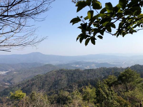 画像: 山頂から望む景色が心身を癒してくれます。