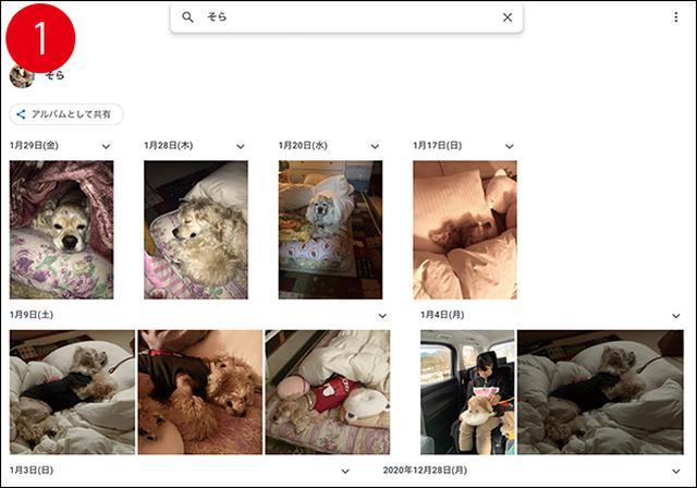 画像2: アップされている膨大な写真の上手な検索、整理法