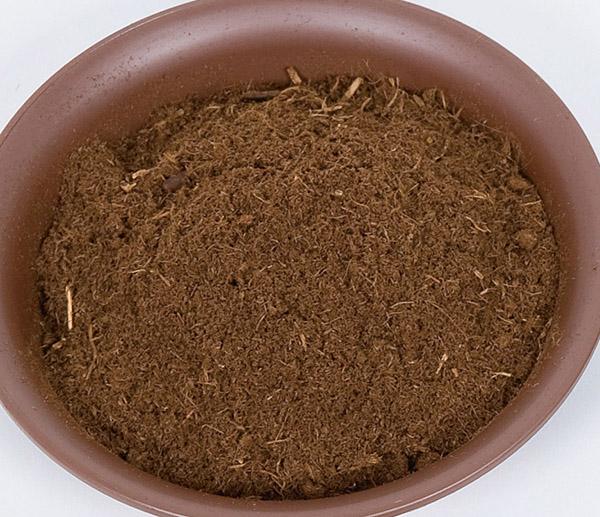 画像3: 用土の種類