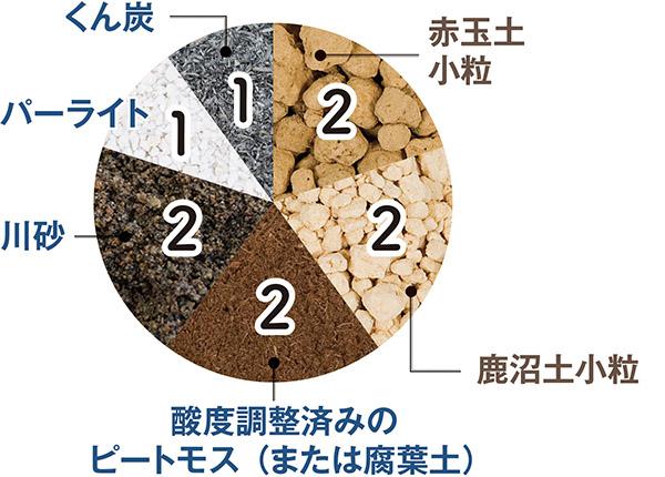 画像2: 多肉植物に適した用土とは?